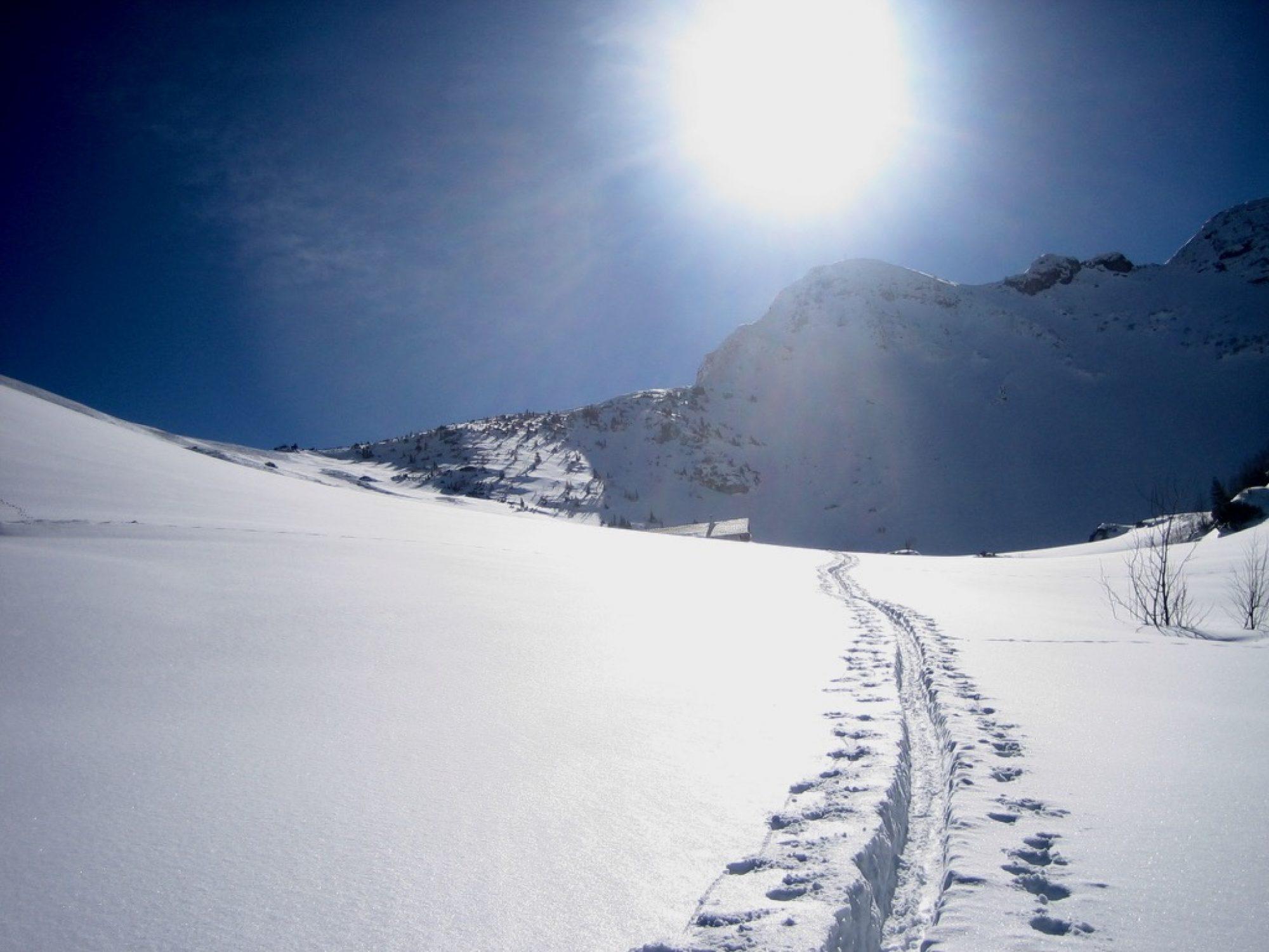 Oberland Alpin